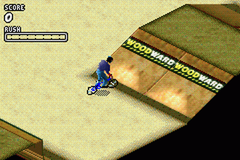 Dave Mirra Freestyle BMX 2 ingame screenshot