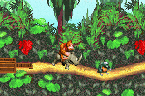 Donkey Kong Country ingame screenshot