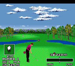 World Masters Golf ingame screenshot