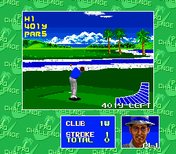 Chi Chi's Pro Challenge Golf ingame screenshot