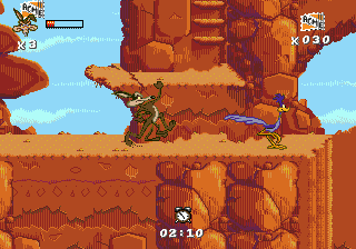 Desert Demolition Starring Road Runner and Wile E. Coyote ingame screenshot