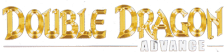Double Dragon Advance logo