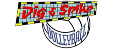 Dig & Spike Volleyball logo