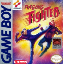 Raging Fighter Nintendo Game Boy cover artwork