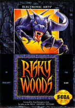 Risky Woods Sega Genesis cover artwork