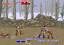 Golden Axe ingame screenshot