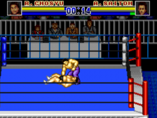 Battle Field '94 in Tokyo Dome ingame screenshot