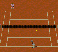 Final Match Tennis ingame screenshot