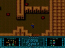 Dungeon Explorer II ingame screenshot