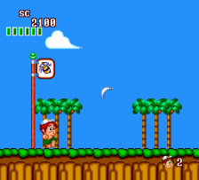 New Adventure Island ingame screenshot