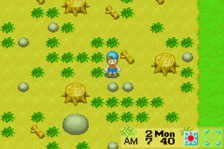 Harvest Moon - Friends of Mineral Town ingame screenshot