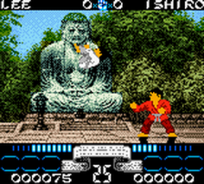 International Karate 2000 ingame screenshot