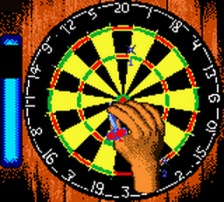 Pro Darts ingame screenshot