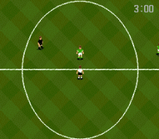 World Cup USA '94 ingame screenshot