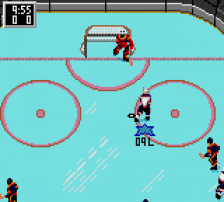 NHL Hockey ingame screenshot