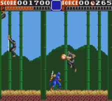 Ninja Gaiden ingame screenshot