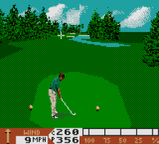 PGA Tour 96 ingame screenshot