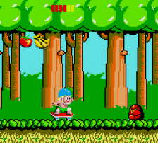 Wonder Boy ingame screenshot