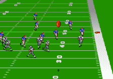 Madden NFL '94 ingame screenshot