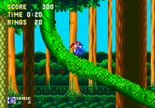 Sonic & Knuckles ingame screenshot