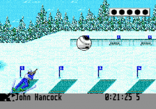 Winter Olympic Games ingame screenshot