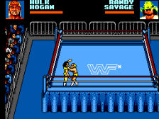 WWF Wrestlemania - Steel Cage Challenge ingame screenshot