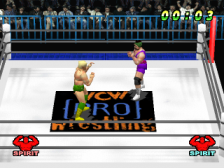 WCW vs. The World ingame screenshot