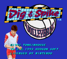 Dig & Spike Volleyball title screenshot