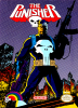 Punisher, The Nintendo NES cover artwork