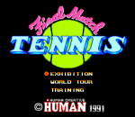 Final Match Tennis title screenshot